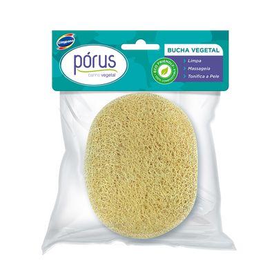 bucha-vegetal-biodegradavel-porus